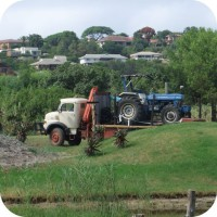 land clearing plettenberg bay garden route truck tractor