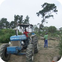 land clearing plettenberg bay garden route 4x4 tractor