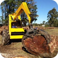 blackwood tree harvesting fsc standards bell
