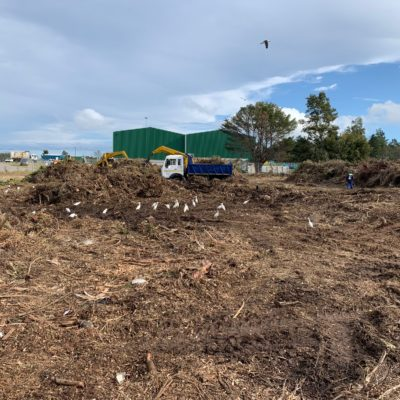 chipper bell logger truck tipper truck digger loader excavator chipping land clearing clean uo green waste plettenberg bay knysna garden route bitou municipality