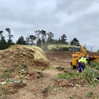 chipper bell logger truck tipper truck digger loader excavator chipping land clearing clean uo green waste plettenberg bay knysna garden route