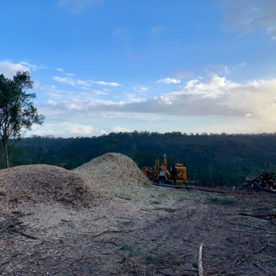 land clearing digger load wood chipperer plant hire truck rental site clearing tree felling timber invasive plants bell logger timber wattle tree felling property development