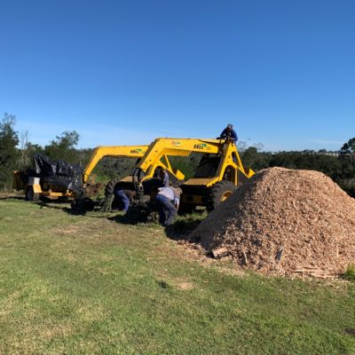 land clearing digger loader plant hire truck rental site clearing tree felling timber invasive plants bell logger timber wattle tree felling property development wood chipper